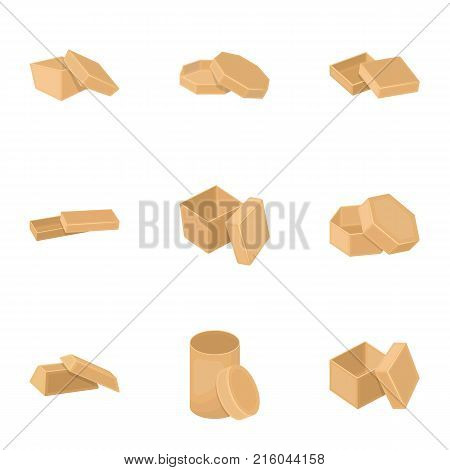 Box, package, packaging, and other  icon in cartoon style.Shell, framework, boxing icons in set collection