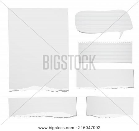 Torn ruled and blank note, notebook, paper strips, sheets speech bubble for text or message stuck on white background