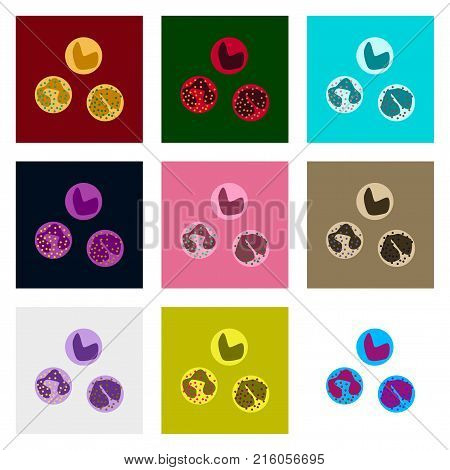 icons set in flat style leukocyte biology, science,