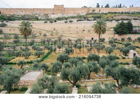 Mount Of Olives And The Old Jewish Cemetery In Jerusalem Israel.
