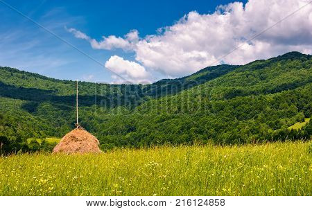 Haystack On A Grassy Pasture In Mountains