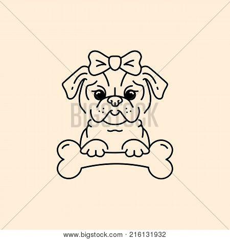 Popular Pug Bow Adorable Dog - 216131932  Perfect Image Reference_51856  .jpg