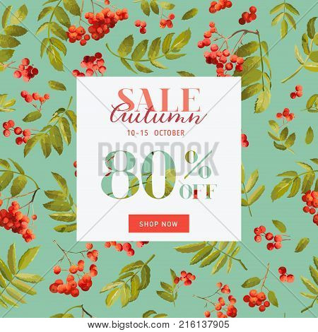 Autumn Sale Floral Banner. Fall Discount Background with Rowanberry and Leaves. Vector illustration