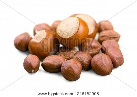 Isolated hazelnuts nuts hazel color group white
