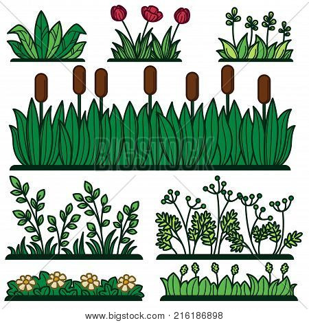 Greenery green grass flower plants and decorative verdure. Vector flat isolated icons of reed, floral garden bushes and green floral tree hedge