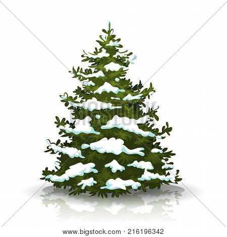 Illustration of a christmas pine tree isolated on white background with winter snow on its branch