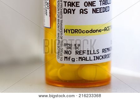Opioid Pain Reliever