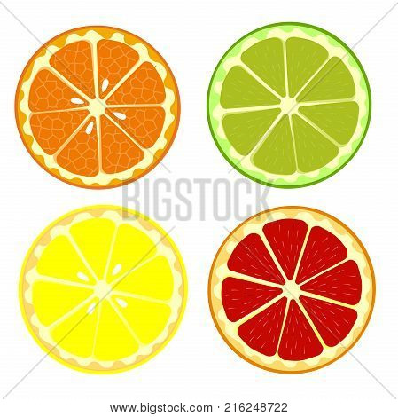 Set of fruits orange lemon lime grapefruit. Cartoon fruits clipart collection. Icons isolated on white background. Vector illustration