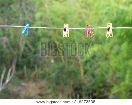 four multicolor cloth pegs on la line with green blackground