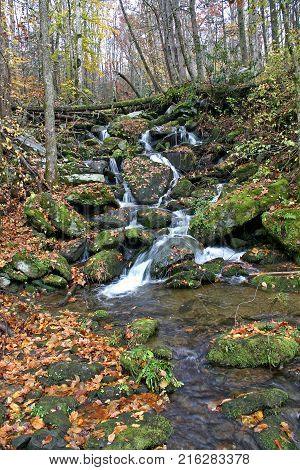 a small stream cascades down through rocks covered with autumn leaves