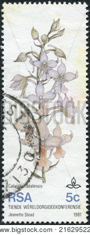 SOUTH AFRICA - CIRCA 1981: A stamp printed in South Africa (RSA), dedicated to 10th World Orchid Conference, Durban, show flower Calanthe Natalensis, circa 1981