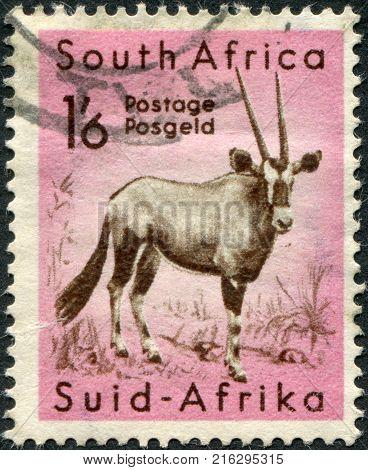SOUTH AFRICA - CIRCA 1954: A stamp printed in South Africa, shows a Gemsbok (Oryx gazella), circa 1954