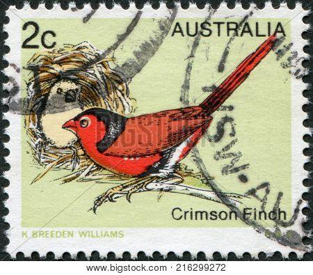 AUSTRALIA - CIRCA 1979: A stamp printed in Australia, shows the Crimson Finch (Neochmia phaeton), circa 1979
