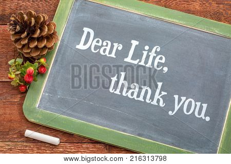 Dear life, thank you - white chalk text  on a vintage slate blackboard with a pine cone