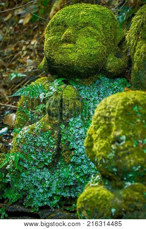 OTAGI TEMPLE, KYOTO, JAPAN - OCTOBER 19, 2016 : STONE SCULPTURE COVERED IN MOSS. Statues sculpted in stone praying. It is old and eroded through time. They are all covered in moss and tiny leaves.