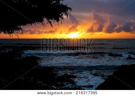 Sunset over ocean framed with trees and clouds.