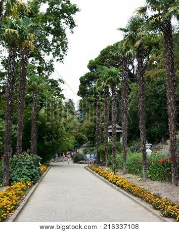 Beautiful places of the Nikitsky Botanical Garden Yalta Crimea