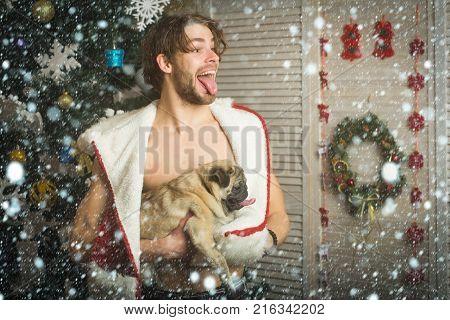Guy In Red Santa Hat Pet Puppy.