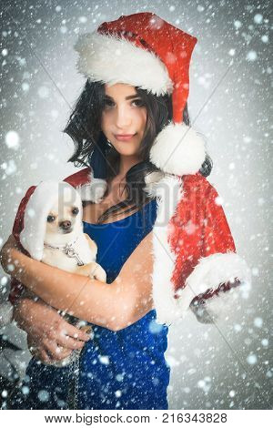 Woman And Chihuahua Dog In Santa Hats On Grey Background