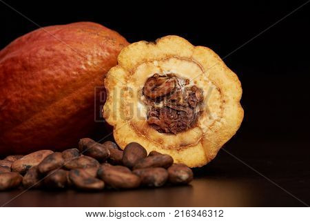 Cacao fruit theme. Macro of cocoa seeds and fruit on dark wooden background