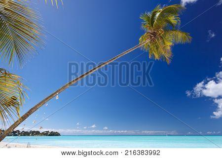 Little Island In Very Calm Sea, Antigua