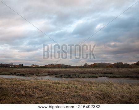 Empty Grass Land Country Trees Blue Sky Clouds Landscape Plain