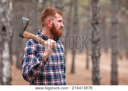 A woodcutter with ginger hair and a beard in a blue checkered shirt stands in the woods among the pines and holds an ax on his right shoulder and looks somewhere. Outdoors.