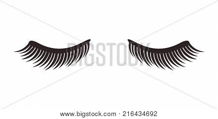 Eyelashes on white background, vector illustration. Eyelash extension. A beautiful make-up. Thick cilia. Eyes closed