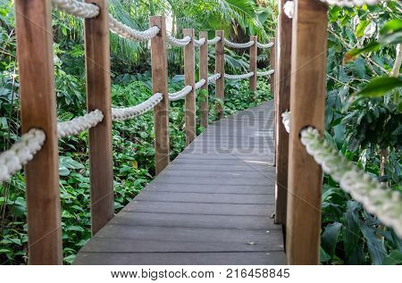 Rope wooden bridge at tropical garden. Lisbon. Portugal