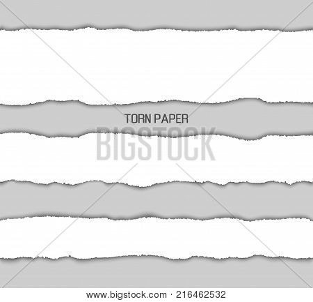 Torn paper picture design representing text written in the centerpiece of image and grey and pieces of documents vector illustration