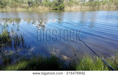 fishing rod. Fishing. Middle of a day. The water is silent. The fish floats in the water. A big catch is expected.