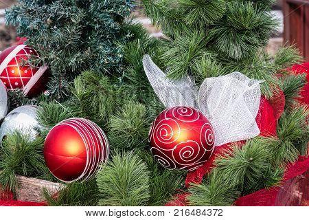 red designed Christmas balls nestled in green Christmas fern.