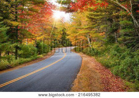 Winding road curves through splendid autumn foliage in New England. Sun rays peeking through colorful trees.