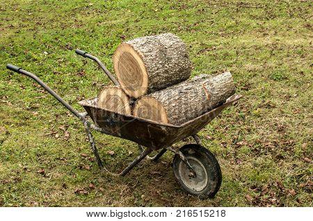 Used garden wheelbarrow loaded with oak tree stumps on grass meadow background