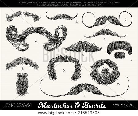 Vector set with mustaches and beards. Hand drawn illustration with fashionable men's styles. Linear Graphics. Kinds and names of moustaches