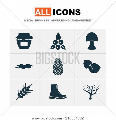 Seasonal icons set with grain, filbert, cedar and other filbert elements. Isolated vector illustration seasonal icons.