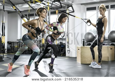 Sportive girls are training with TRX straps in the gym on the windows background. They are wearing the multicolored sportswear: pants, tops, sleeveless and sneakers. Horizontal.