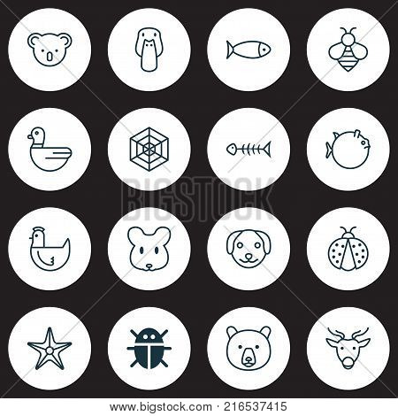 Zoo icons set with bumblebee, goose, hen and other goose elements. Isolated vector illustration zoo icons.