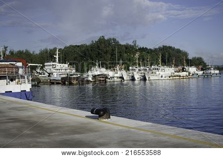 Ships resting at the Harbor or Port