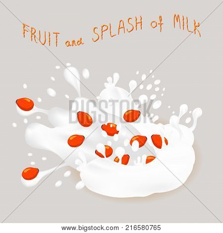 Abstract vector icon illustration logo for ripe berry red rose hip splash of drop white milk. Rose Hip pattern consisting of splashes drip flow liquid Milk. Eat sweet berries rosa hips in milks.