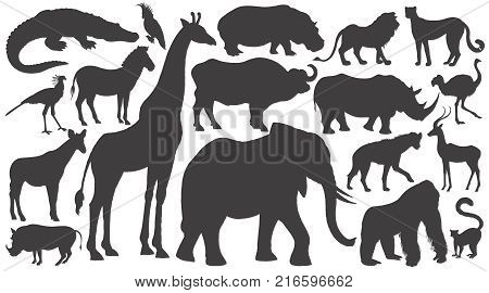 Black silhouettes of African animals on white background set. Vector illustration art. Elephant giraffe buffalo hippo rhino lion cheetah antelope ostrich gorilla crocodile warthog zebra...