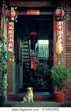Naxi style hostel with dog in old street in Lijiang, Yunnan, China.