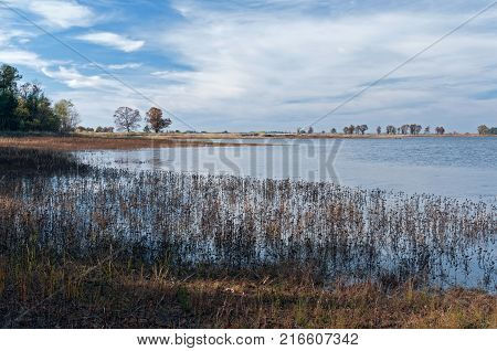 wetlands and marsh expanse at necedah national wildlife refuge in juneau county wisconsin