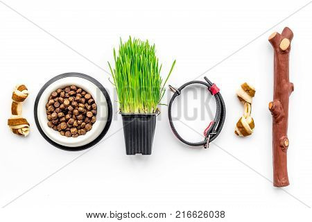 Toys for dog stick and ribbon bone near collar, dry food in bowl and grass in pot on white background top view.
