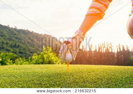 Hand asian woman putting golf ball on tee with club in golf course on sunny day for healthy sport. Lifestyle Concept