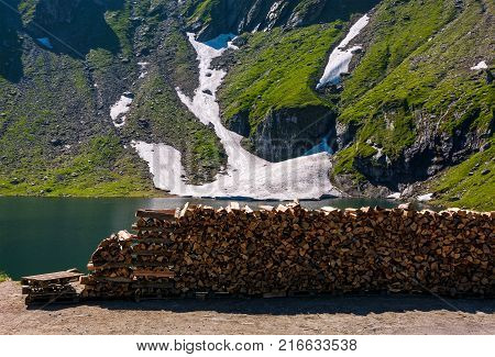 Chopped Firewood On The Shore Of A Glacier