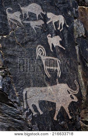 Palaeolithic petroglyphs in the famous Sarmish Gorge (Sarmishsay). Sarmishsay is the largest of many picturesque gorges along the southern slopes of the Karatau range Uzbekistan.