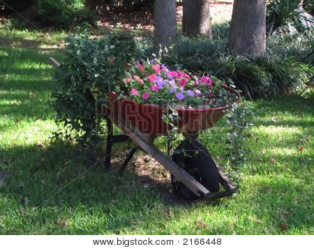 Red Wheel Barrow Full Of Flowers And Greenery