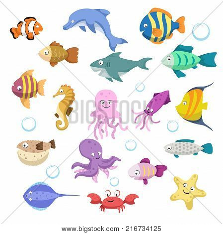 Cartoon trendy colorful reef animals big set. Fishes mammal crustaceans.Dolphin and shark octopus crab starfish jellyfish. Tropic reef coral wildlife.