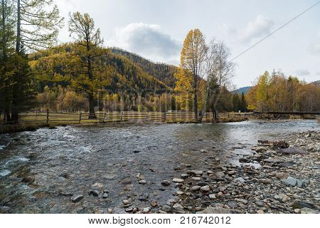 Autumn mountain landscape. Mountain river in the background of the Altai Mountains. Russia, the Altai Republic.